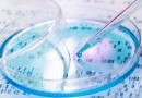 Zbulimi i rëndësishëm: Loperamidi vret qelizat kancerogjene