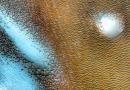"""Mos ndoshta jashtëtokësorët ekzistojnë vërtet? NASA bën publike fotot që tregojnë se Marsi ka """"merimanga"""" dhe liqene"""