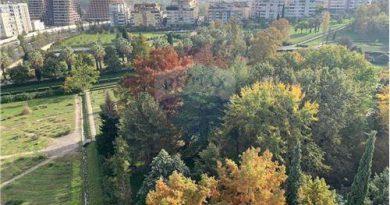 Gjykata rrëzon Qeverinë: Kopshti Botanik NUK do t'i kalojë në pronësi Bashkisë, është i Universitetit të Tiranës dhe FSHN-së